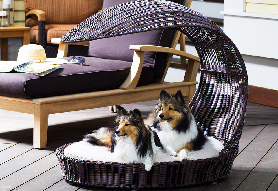 Outdoor Dog Chaise Lounger, Sharper Image